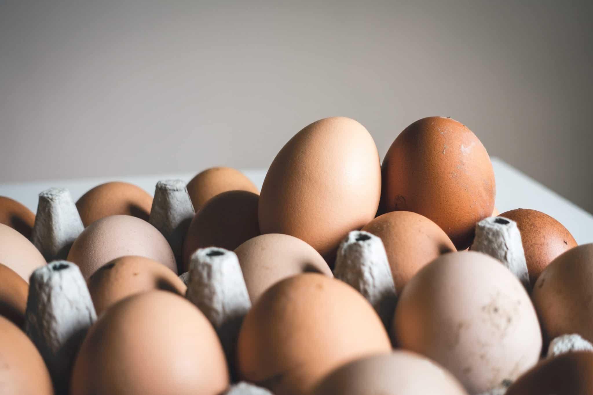 Eggs and heart disease study