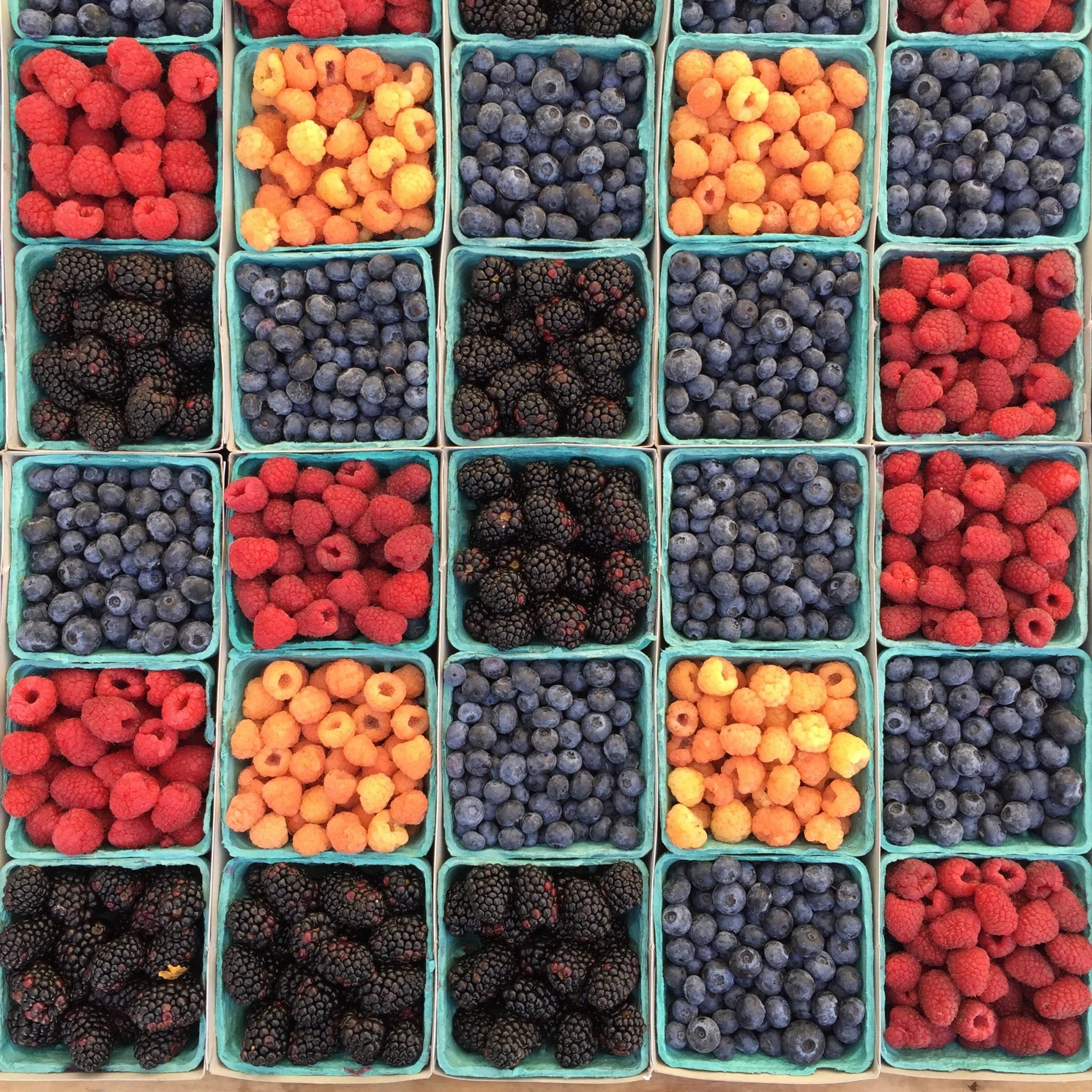Different colored berries in pint boxes, from overhead