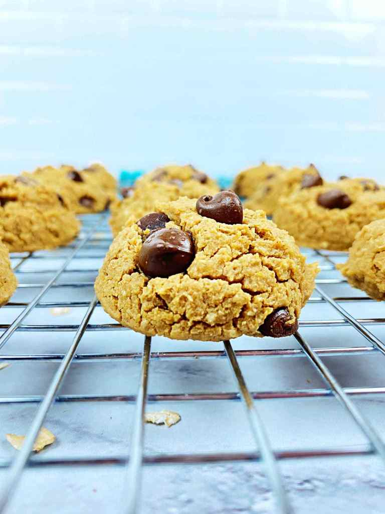 Chickpea Chocolate Chip Cookies from Your Choice Nutrition