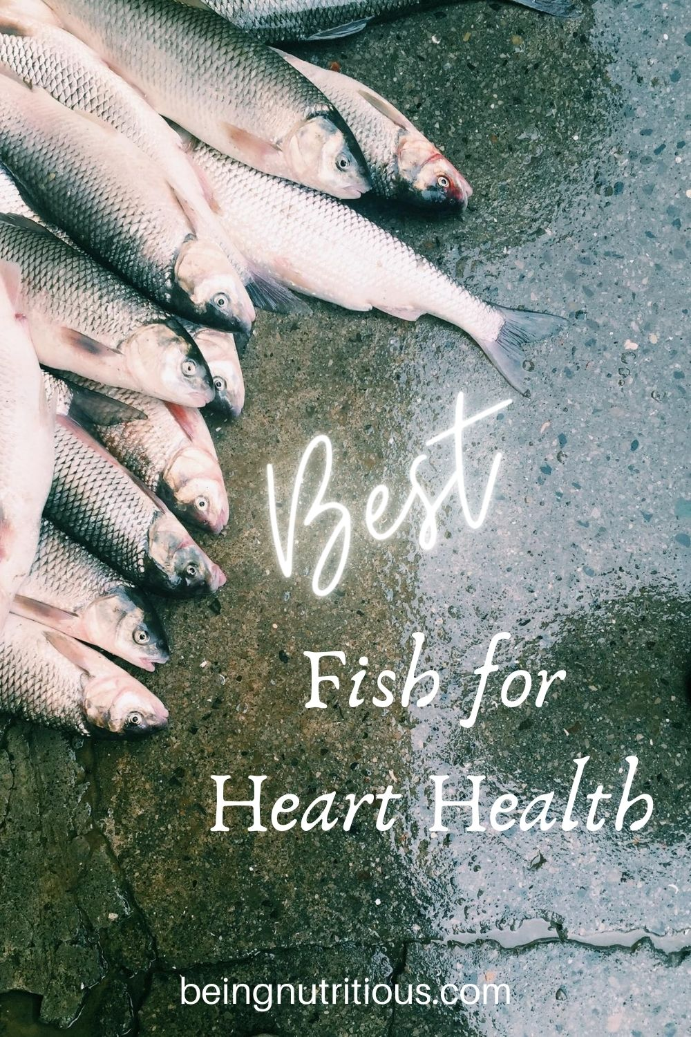 Pile of fish lying on wet concrete with text overlay: Best Fish for Heart Health