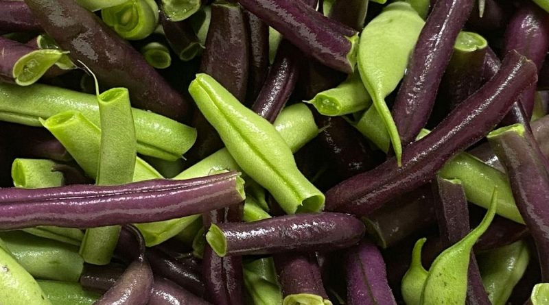 Close up of purple and green beans