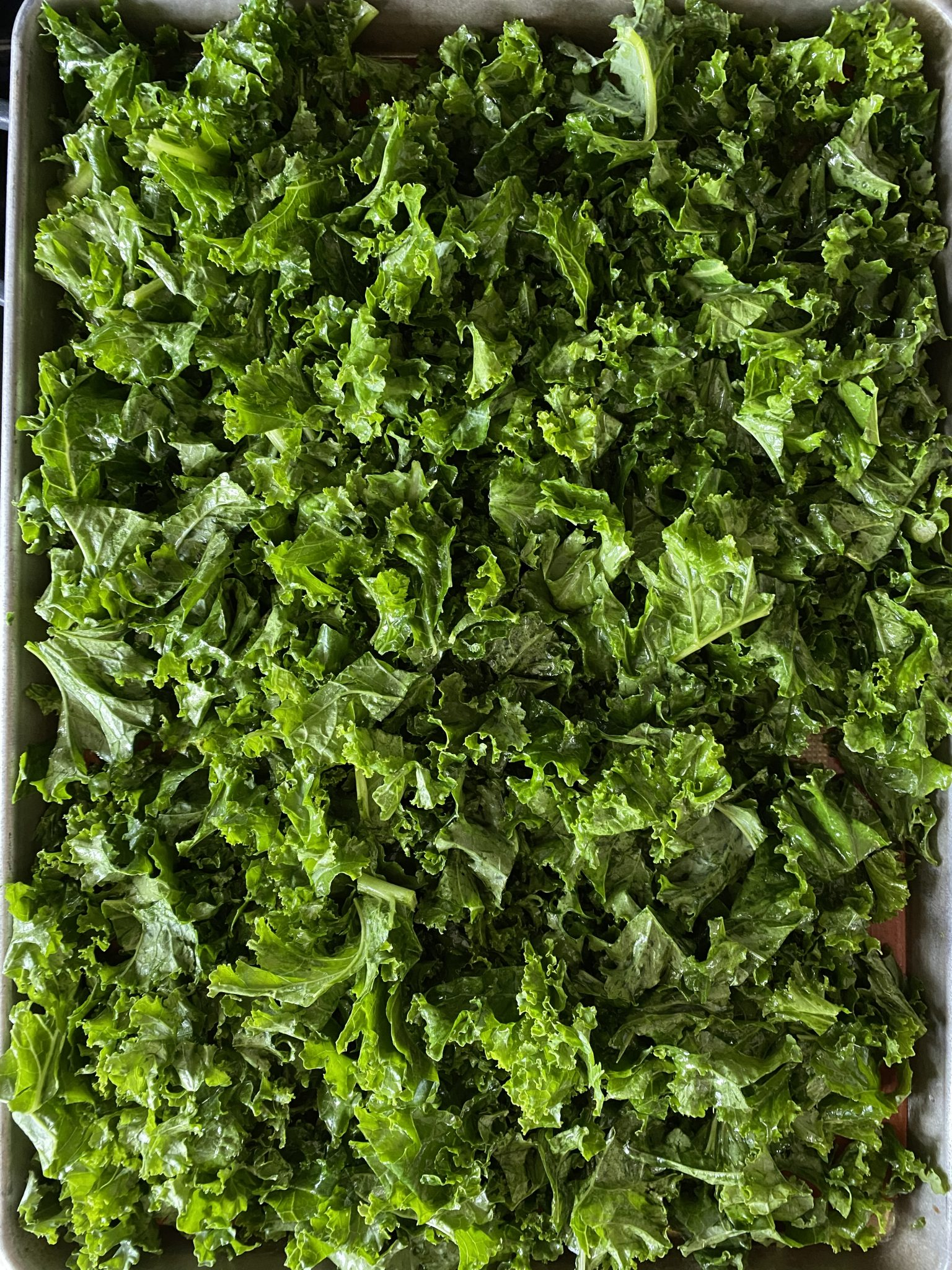massaged kale on a baking sheet, ready for roasting.
