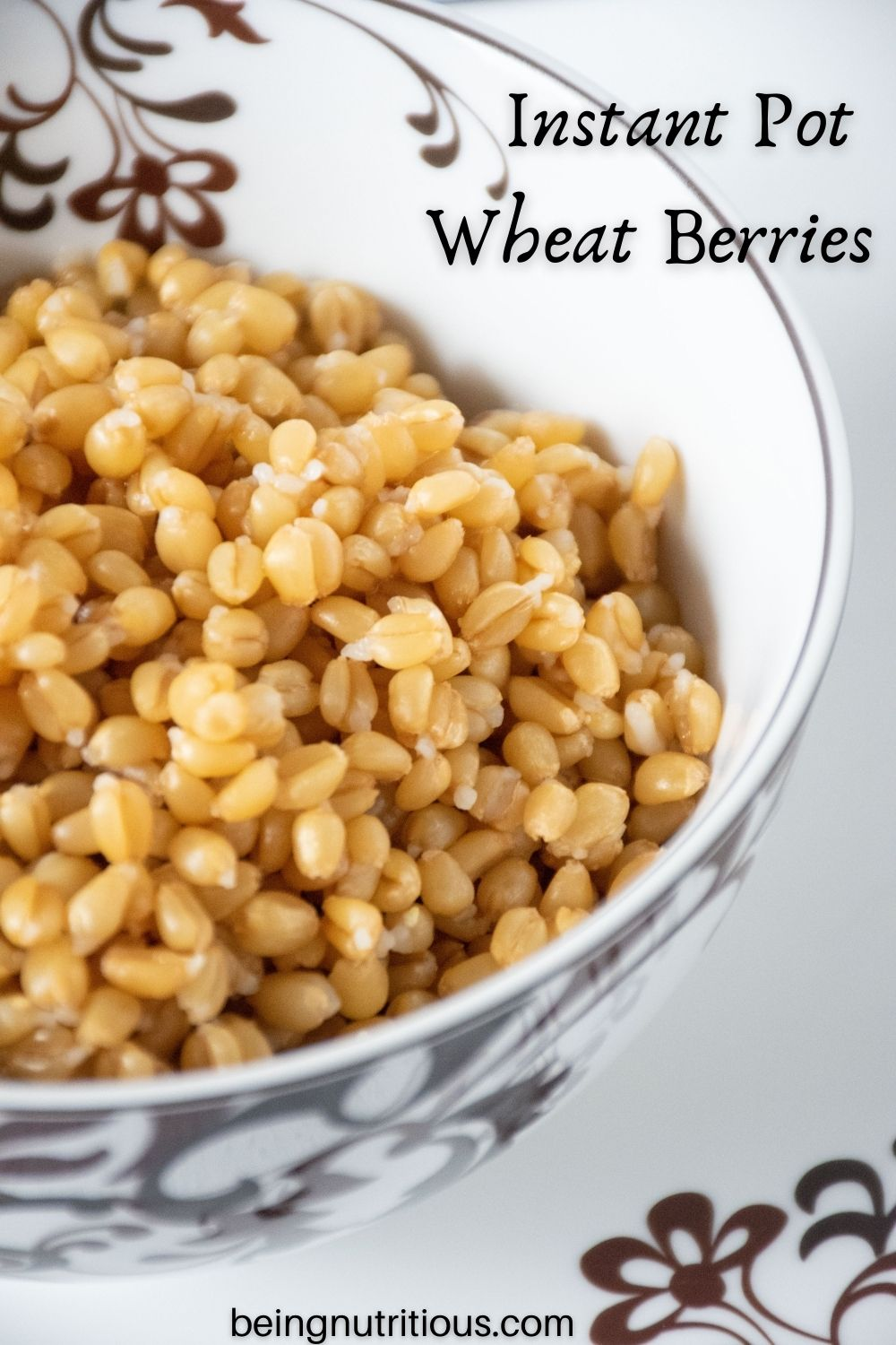 Bowl of cooked wheat berries. Text overlay: Instant Pot Wheat Berries.